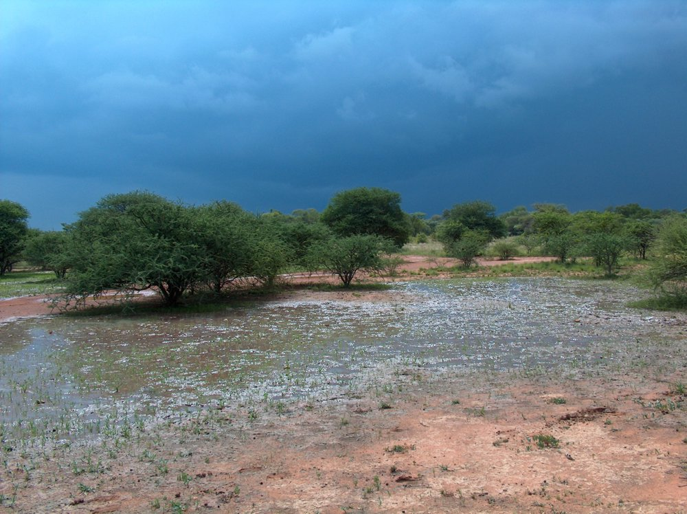 Prayer for Rain: from the Community of Modimolle 24th Nov 2015 12H00 – 14H00